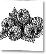 Raspberries Image Metal Print