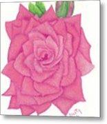 Raspberry Pink Metal Print