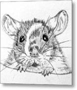 Rat Sketch Metal Print