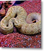 Rattlesnake In Abstract Metal Print