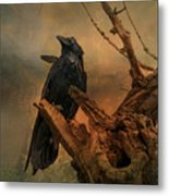 Raven Lover Metal Print