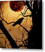 Raven Moon Metal Print by Bill Cannon