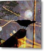 Ravens Night Metal Print