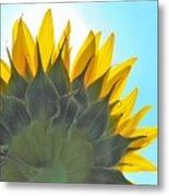 Ray Of Sunflower Metal Print