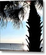 Raymonds Afternoon Sun Metal Print
