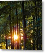 Rays Of Dawn Metal Print