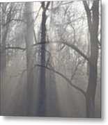 Rays Of Hope Metal Print by Bill Cannon