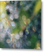 Rays Up Close Metal Print