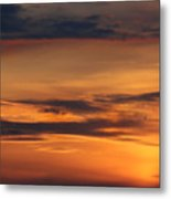 Reach For The Sky 10 Metal Print by Mike McGlothlen