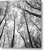 Reaching Metal Print