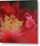Reaching For Joy Metal Print by Laurie Search