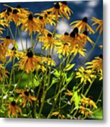 Reaching For The Blue Sky Metal Print