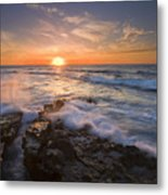 Reaching For The Sun Metal Print