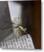 Reading The Paper  Metal Print