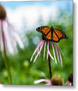 Ready For Departure Metal Print