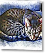 Ready For Napping Metal Print