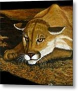 Ready To Pounce Metal Print