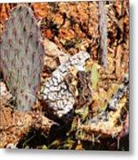Real Cactus In An Actual Desert  Metal Print