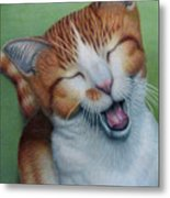 Really I Am Wide Aaawaaaaake Metal Print