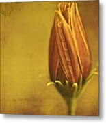 Recollection Metal Print by Bonnie Bruno