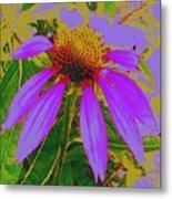 Recolored Echinacea Flower Metal Print