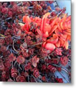 Red And Burgundy Succulent Plants Metal Print