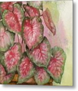 Red And Green For Susan Metal Print