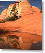 Red And White Reflections In Blue Metal Print