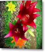 Red And Yellow Garden Flowers Metal Print