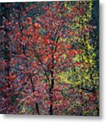 Red And Yellow Leaves Abstract Vertical Number 1 Metal Print