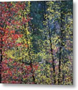 Red And Yellow Leaves Abstract Vertical Number 2 Metal Print