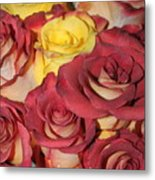 Red And Yellow Roses Metal Print
