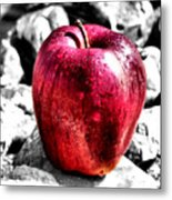 Red Apple Metal Print by Karen M Scovill
