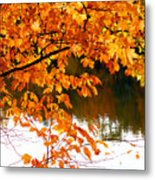 Red Autumn Leaves 2 Metal Print