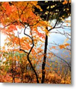 Red Autumn Leaves 5 Metal Print