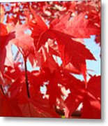 Red Autumn Leaves Art Prints Canvas Fall Leaves Baslee Troutman Metal Print