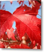 Red Autumn Leaves Fall Art Colorful Autumn Tree Baslee Troutman Metal Print