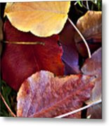 Red Autumn Leaves Metal Print