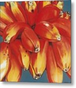 Red Bananas Of Jocotepec Metal Print