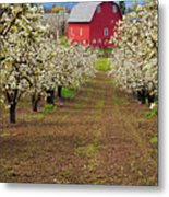 Red Barn Avenue Metal Print by Mike  Dawson