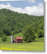 Red Barn Yellow Buttercups Metal Print