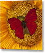 Red Butterfly On Sunflower Metal Print
