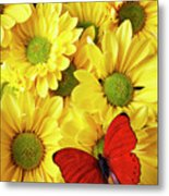 Red Butterfly On Yellow Mums Metal Print
