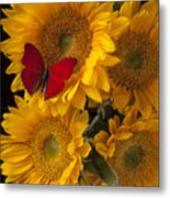 Red Butterfly With Four Sunflowers Metal Print