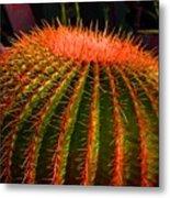 Red Cactus Metal Print