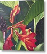 Red Cannas Metal Print by Deleas Kilgore