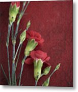 Red Carnation Stems Metal Print