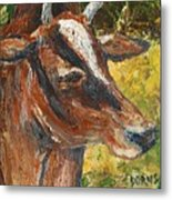 Red Cow Metal Print