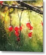 Red Currants Metal Print
