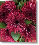 Red Daisies Bouquet Metal Print